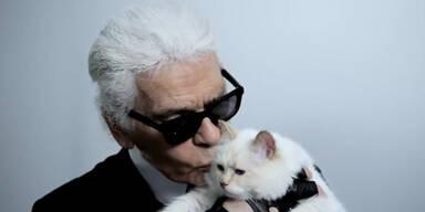 Lagerfeld küsst seine Katze für Kampagne