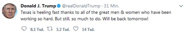 Trump Twitter heel