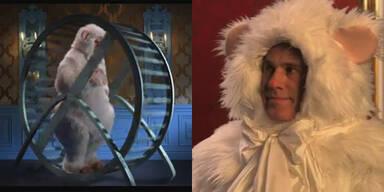 "Christoph Waltz als Hamster in YouTube-Parodie ""Ameowadeus Cat"""