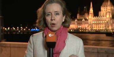 Spinne krabbelt auf Reporterin herum