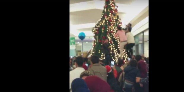 Hetz-Video: Hier sollen Flüchtlinge Wiener Christbaum plündern