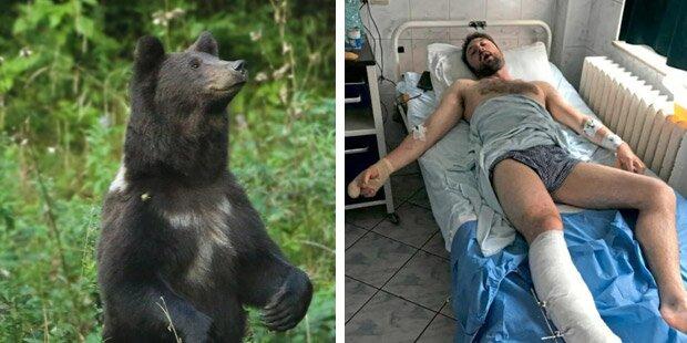 Deutscher beim Wandern von Bär attackiert