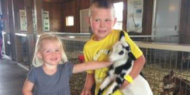 Kleinkind stirbt nach Besuch im Streichelzoo