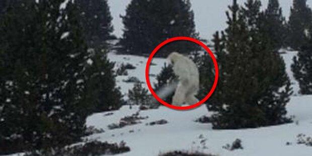 Wurde hier ein Yeti gesichtet?