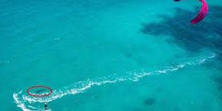 Weißer Hai verfolgt ahnungslose Kite-Surferin
