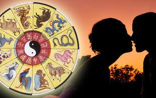 Wer passt zu mir?: Chinesisches Liebeshoroskop