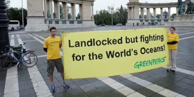 Greenpeace Überfischung