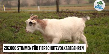Unsere Tiere - Tierschutzvolksbegehren 1 - Sendung 05072020