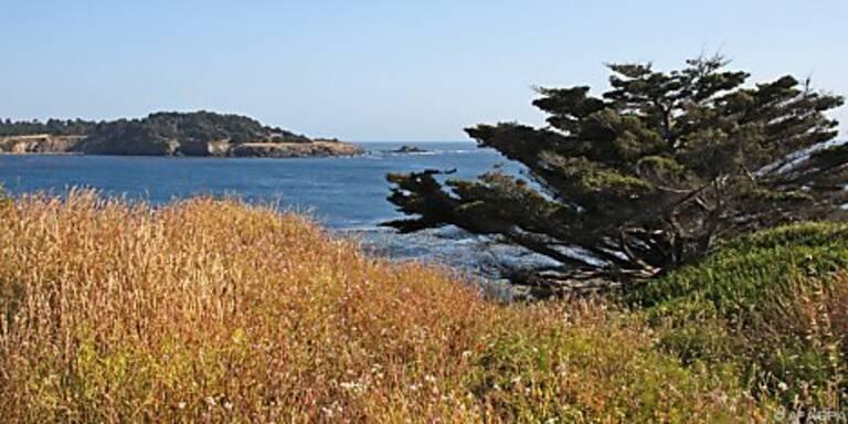 Unverbauter Blick auf Kaliforniens Küste