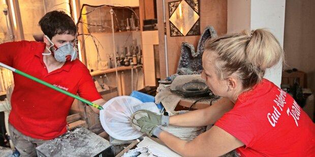 323 Vögel aus Messie-Wohnung gerettet