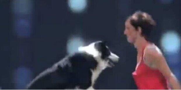 Alexandra & Esprit: Mit Dog-Dance zum Sieg