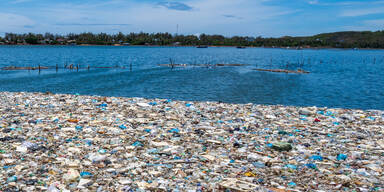 verschmutzes Meer