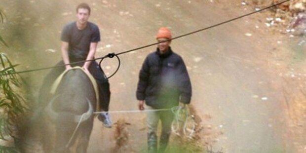Mark Zuckerberg reitet den Büffel