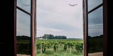 Wie wird der Geschmackssinn bei Flugreisen beeinflusst?