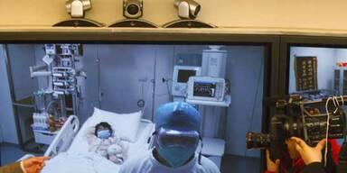 Vogelgrippe erreicht offiziell Peking