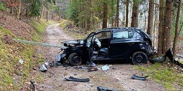 Unfall: Auto bei Crash gepfählt: Lenker floh zu Mutter