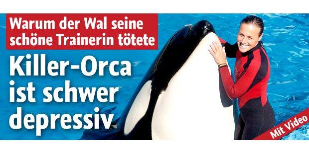 """Orca """"Tilly"""