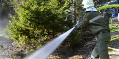In dieser Jahreszeit: Waldbrand in Tirol