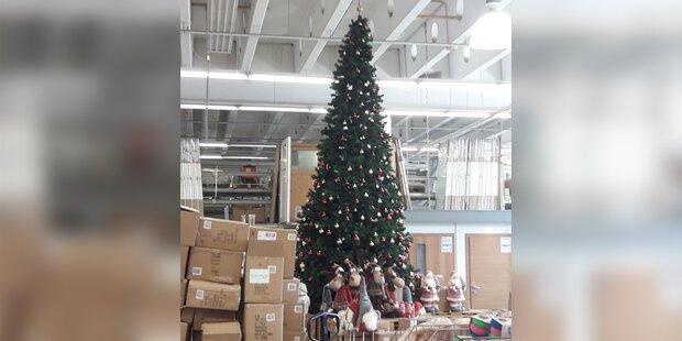 Weihnachtsbaum bei 30 Grad gesichtet