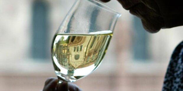 Na Prost: So gut wird der Wiener Wein