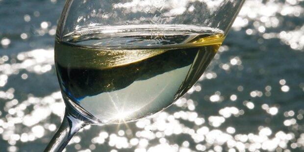 Klein aber fein - Der kleinste Weingarten von Salzburg