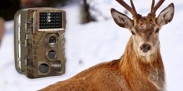 Wildkameras für Überwachungszwecke
