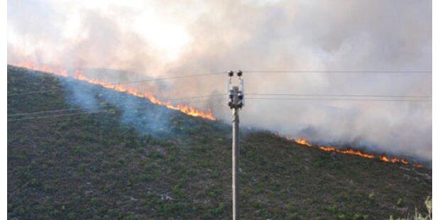 Waldbrände wüten in Südeuropa