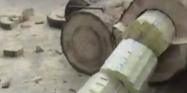 Rumänien: Zigaretten in Bäumen geschmuggelt