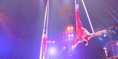 Zirkus - Ein Blick hinter die Kulissen