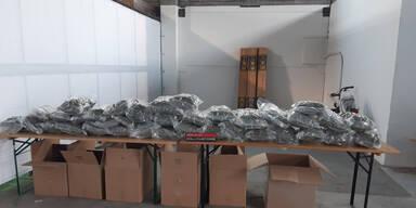 Zoll stellt 37 Kilo Marihuana im Möbeltransport sicher