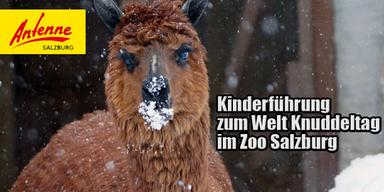 Alpaka Zoo Salzburg