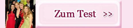 Zum-TestSATC