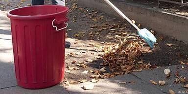 Zum Kompostieren darf das Laub nur feucht sein
