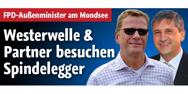 Westerwelle besucht Spindelegger