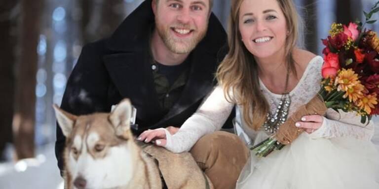 Hund filmt Hochzeit seiner Herrchen