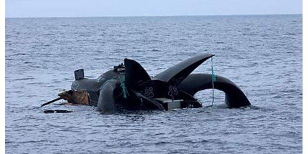 Boot der Tierschützer gesunken
