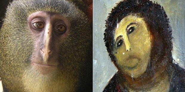 Affe sieht aus wie verpfuschter Jesus
