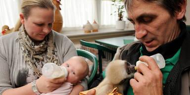 Affenbaby wächst mit Menschenbaby auf
