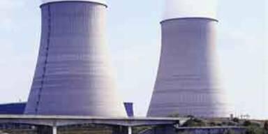 Weitere 8 Reaktoren in Grenznähe geplant