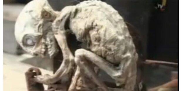 Hatte das Alien-Baby einen Bruder?