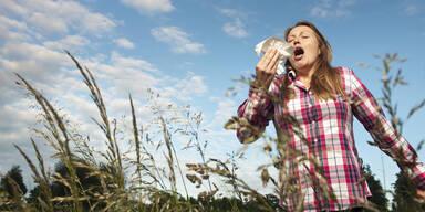 Studie zeigt starken Anstieg von Allergierisiko