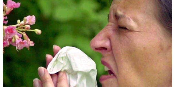 Die besten rezeptfreien Mittel bei Allergien