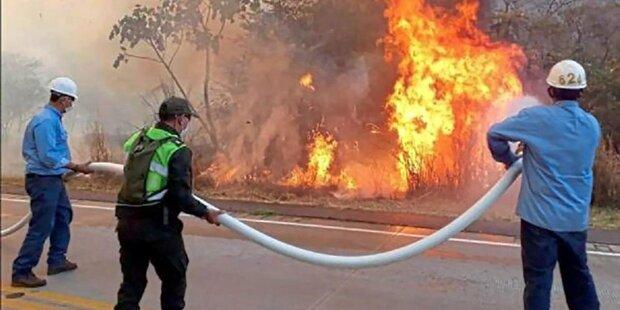 Hunderte neue Feuer im Amazonas