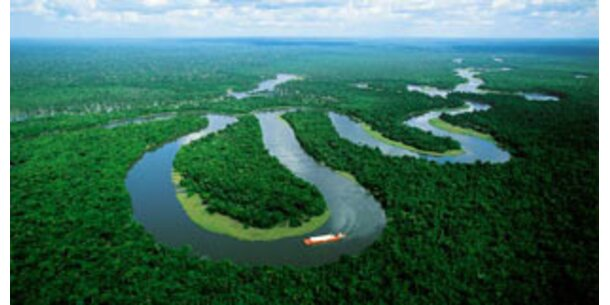 Amazonas schrumpft bis 2030 um 20%