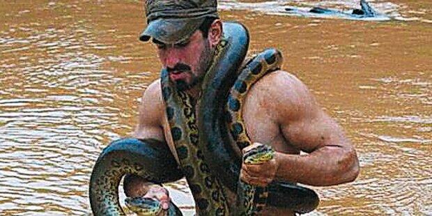 Tierschützer ließ sich von Anakonda fressen