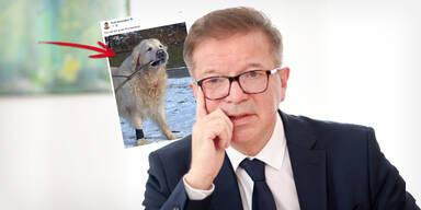 Anschober erntet wegen Hunde-Foto Shitstorm