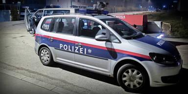 """""""Corona-Leugner"""": Wiener Polizeipraesident für Demo-Verbot"""