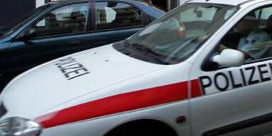 apa polizei auto