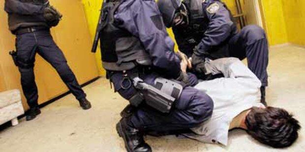 Ternitzer beauftragte brutale Ost-Bande