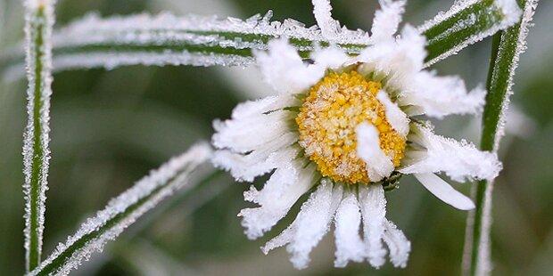 Frostiger Start in den Tag